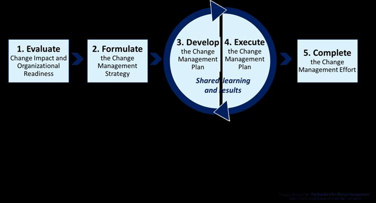 15 Key Culture Actions