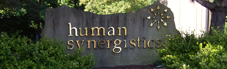 About Human Synergistics