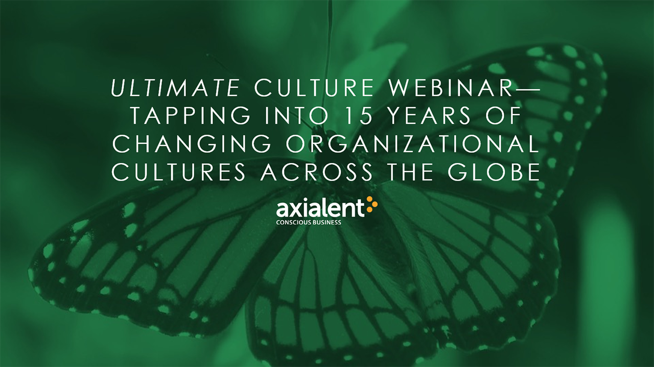 Tapping Into 15 Years of Changing Organizational Cultures Across the Globe