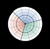 Interactive Circumplex