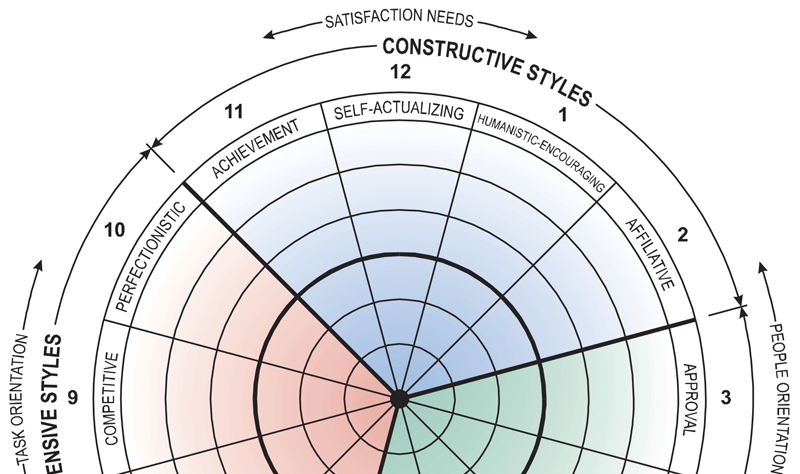 The Circumplex assessment of leaders and team members