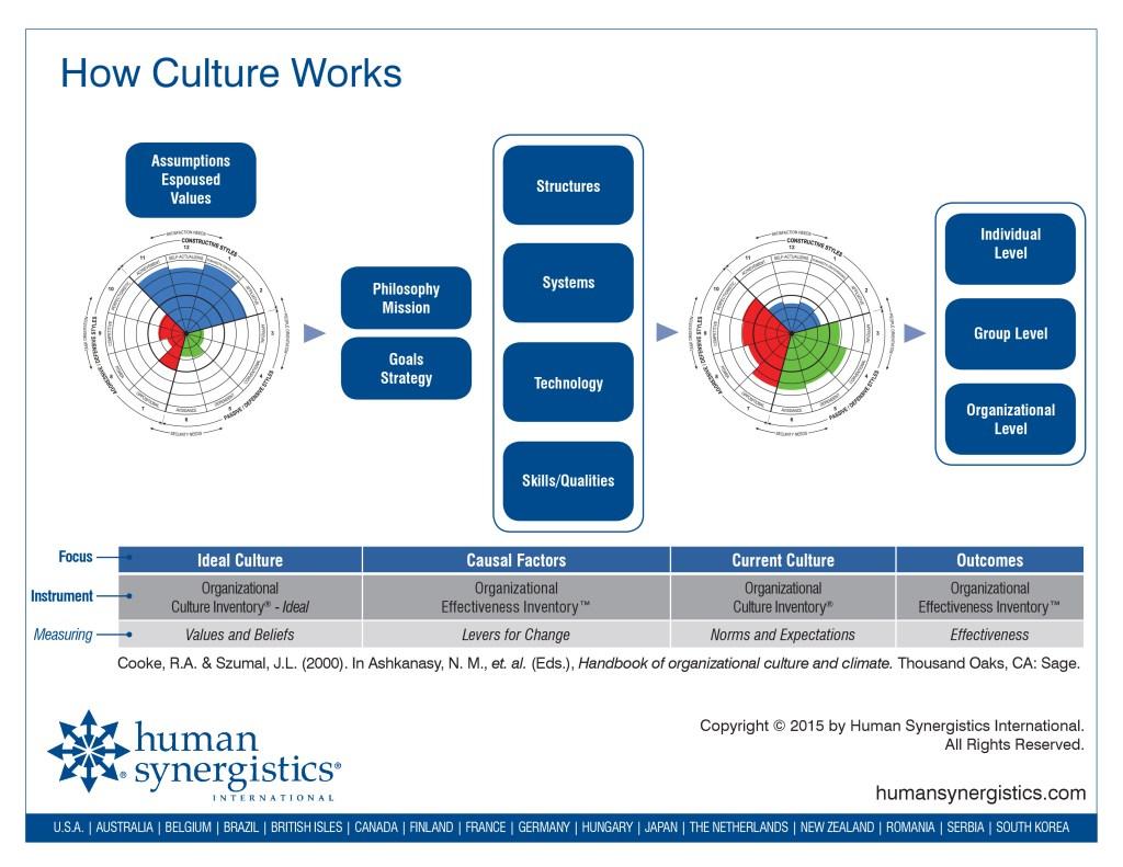 CultureModel-handout-11_15