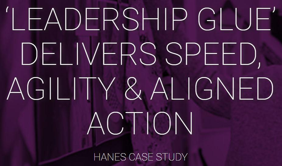 hanes case study
