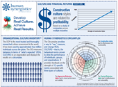 Financial Returns from Culture Change