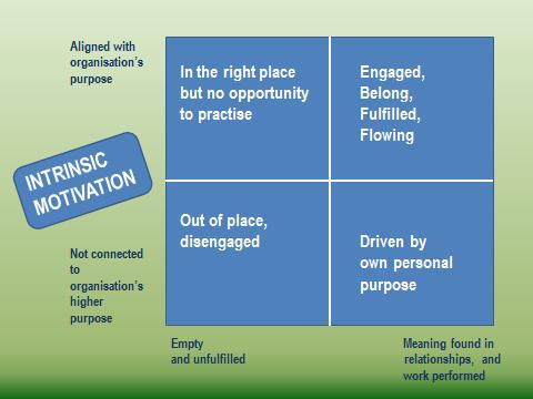 intrinsic-motivation