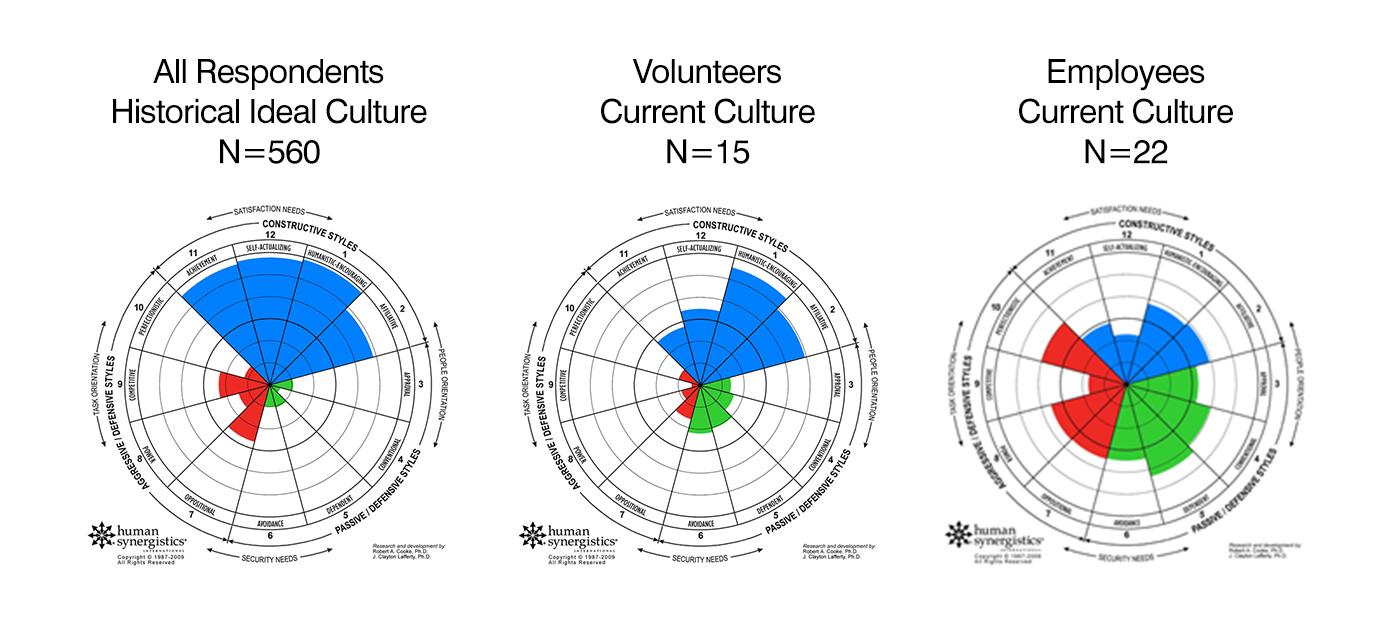 Nonprofit Circumplex profiles