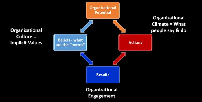 Organizational Diagram