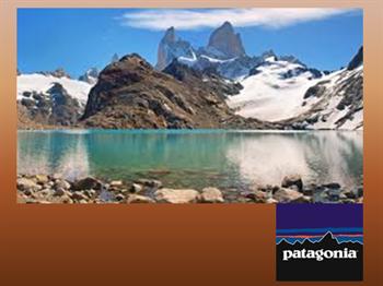 patagonia_virtuous5.jpg