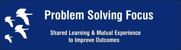 Problem-Solving Focus
