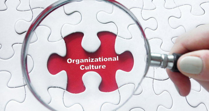 culture and diversity & inclusion