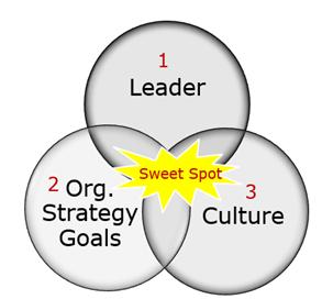 Sweet Spot of Success