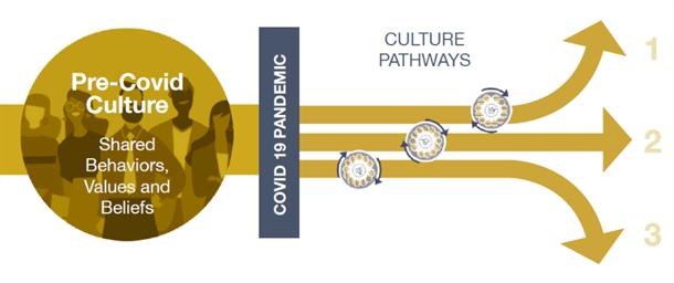 culture pathways